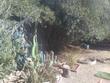 tucson,  AZ 85741
