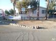salton city,  CA 92275